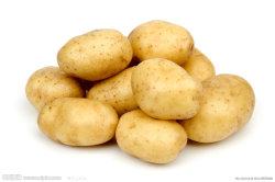 De concurrerende Verse Aardappel van de Kwaliteit (150g en omhoog)