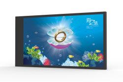 """Al Aire Libre de 42"""" pantalla táctil LCD TV de pantalla quiosco de la Publicidad Digital Signage"""
