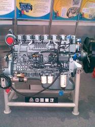 De Assemblage van de Motor HOWO (AZ6100004163/265/366/466/566)
