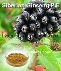 Eleutheroside van uitstekende kwaliteit B+E 0.8% Siberisch Uittreksel van Ginsengen