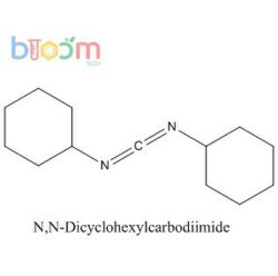 Bloom Tech réactif chimique N, N-dicyclohexylcarbodiimide CAS 538-75-0