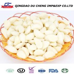 Würfelt chinesische Qualität gefrorener abgezogener Knoblauch-Nelke-Knoblauch
