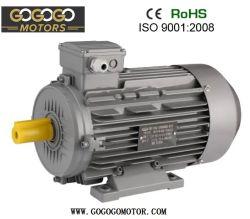 Ce 3 de Elektrische Motor van de Hoge Efficiency IP54/IP55 van de Fase Ie3 Ie2 380V 400V 415V 460V 660V 50Hz 60Hz 2pole 4pole 6pole 8pole 10pole B3 Foot/B5/B35/B14 (71-355L)