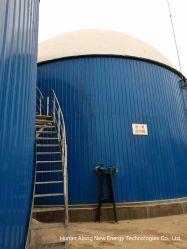 Cochon/vache/ferme avicole Usine de biogaz