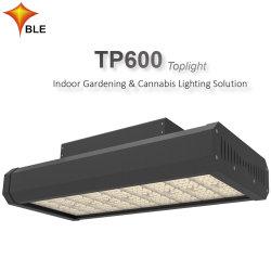 ضوء LED ينمو طاقة عالية 600 واط لإضاءة الحائط في المصانع الداخلية