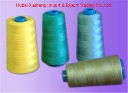 Colorés pour choisir les filés de polyester à 100 % pour le tricotage