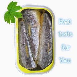 En Sauce et d'huile de sardine en conserve, le maquereau Thon