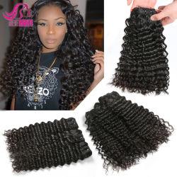 Heiße Brasilianer-malaysische Jungfrau-Haar-tiefe Wellen-malaysisches lockiges Haar-reizvolles Menschenhaar-Extensions-Bündel des Verkaufs-100%