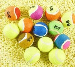 사랑스러운 삐걱거리는 다채로운 애완 동물 정구 공