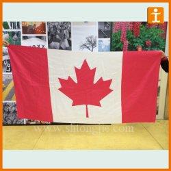 Preiswerte Großhandelsgewebe-Polyester-Staatsflagge (TJ-01)