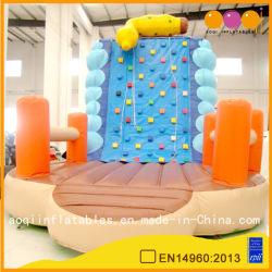 Sport en salle de jeu Escalade de rocher gonflables (aq1921)