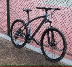 2018 Standard 29er Fibra de carbono para Bicicleta de Montaña MTB Bicicleta Carbono