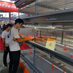 Remoção de estrume da correia da gaiola de frango para máquinas e equipamentos de frangos de corte