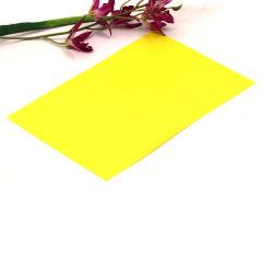 [أ4] حجم أصفر [سليد كلور] صلبة [فروستد] بلاستيكيّة [بّ] صفح لأنّ غلاف حقيبة