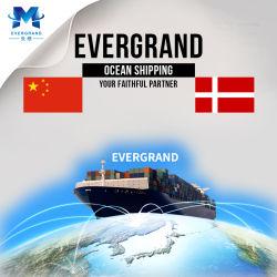De professionele Overzeese Verschepende Dienst van China aan Denemarken/Aarhus/Kopenhagen/Esbjerg/Aalborg/Odense