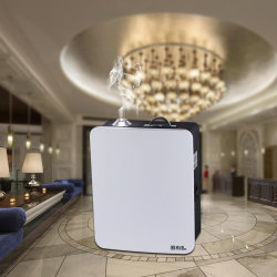Diffusore della macchina dell'aria del profumo del nebulizzatore & del professionista dell'aroma del profumo del purificatore dell'aria di sistema del diffusore del profumo dell'ingresso dell'hotel con il sistema di HVAC