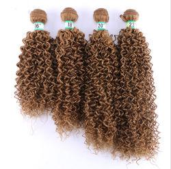 Synthetisch Haar voor het Kroezige Krullende Haar die van Vrouwen de Dubbele Lange Weft Stukken van het Haar van Kanekalon van de Uitbreiding van het Haar weven
