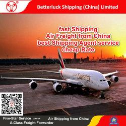 El mejor servicio de agente marítimo desde China a Alemania Berlín Air Freight