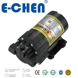 Motor dc sin escobillas de la bomba de agua 600 GPD 4l/min@80psi Max 140psi CE500