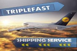 Agent van de Logistiek van de lucht de Verschepende aan de Vrachtvervoerder van Zuid-Afrika Van China