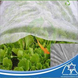 Mothproof PP Spunbond Nontissé anti-UV pour l'Agriculture