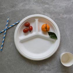 La bagasse de canne à sucre jetables compostables l'emballage alimentaire vaisselle biodégradable