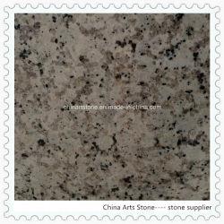 Le chinois et le marbre et granit blanc pour les comptoirs et des tuiles