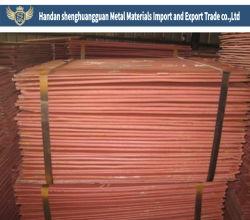 Lieferanten-Empfehlungs-Kathoden-Kupfer mit SGS-Zustimmungs-hohem Reinheitsgrad