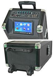 Двойной 10дюйма полный диапазон MP5 караоке портативный активные громкоговорители с ЖК-экраном