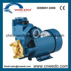 Self-Priming PS-126 электрический водяной насос