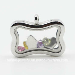 جديدة تصميم زيّ [ستينلسّ ستيل] مجوهرات يعوم [لوكت] مدلّاة