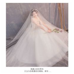Französisches Luxuxweinlese-Hochzeits-Kleid