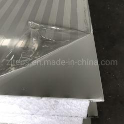 Sandwich mousse légère en aluminium mur/panneau de toiture pour conteneur chambre/entrepôt