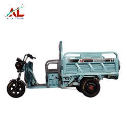 درّاجة ثلاثية [أل-ش] جديدة حديثة كهربائيّة لأنّ عمليّة بيع
