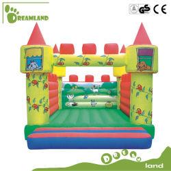 Parco divertimenti Bouncy Castle con scivoli gonfiabili Giocattoli per bambini Dlib011