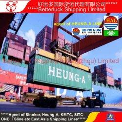 중국 심천 광저우 콘테이너 출하 서비스 에이전트에서 베트남 하이퐁에 바다 운임
