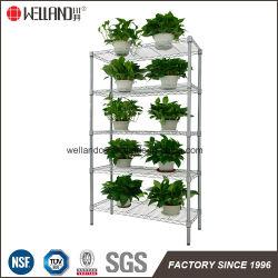 La meilleure qualité de l'argent 5 étagère intérieure Affichage fleurs et de plantes de jardin en métal Rack de stockage