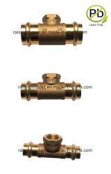 Bleifreie Bronzekupplung mit Kontaktbuchse-Verbindung