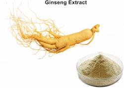 El 80% Ginsenosides Ntural en polvo Extracto de Ginseng