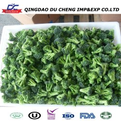 Nueva cosecha un grado de vegetales orgánicos frescos de brócoli congelado