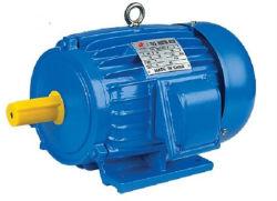 Aeef estándar IEC Motor eléctrico de la jaula de ardilla