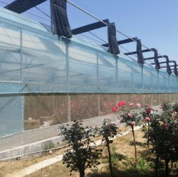 خيمة أفلام بوليثيلين الزراعية/التجارية مزودة بنظام تبريد