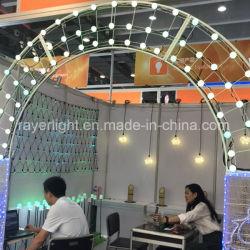 Il festival dell'arco del LED illumina le decorazioni di natale che Wedding l'indicatore luminoso di motivo della decorazione LED