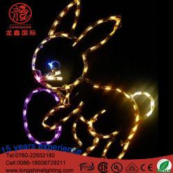 LED lumière décorative de Pâques pour le jour de Pâques extérieur/intérieur décoration
