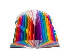 L'élargissement de dossier de fichiers 24 poches grandes Rainbow en plastique extensible accordéon permanent de l'Organiseur de fichier A4 Dossier Document Wallet