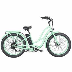 Bici elettrica della città della fabbrica 48V 500W con il certificato En15194
