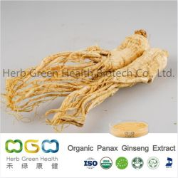 Natürlicher Pflanzenauszug-organisches Panax-Ginseng wasserlöslich mit 1-20% Ginsenoside Kraut-Kräuterauszug