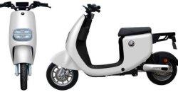 2021 Novos Motociclo eléctrico com pedal 48V Bateria de lítio amovível