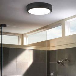 La stanza da bagno esterna impermeabile dell'indicatore luminoso di soffitto illumina le lampade del portico della lampada del riparo della parete 90-260V