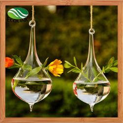 파열 공예 유리 테라리움 Hanging Glass Vase